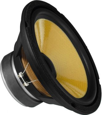 Top hi-fi bass speaker, 100W, 8Ω SPH-250KE