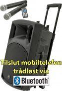 """Mobilt lydanlæg """"Luxus udgave"""" QX15PA / 15"""" bas MP3/USB/SD-input, FM Radio og Bluetooth, inkl. 2 trå"""