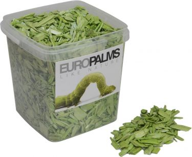 Europalms Deco Wood, lime, 5.5l bucket