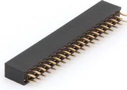 Dual Pin header hun 2,54mm 40 pins