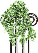 Europalms Ivy tendril, green-white, 50cm