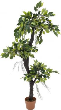 Europalms Ficus Forest Tree, 150cm