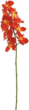 Europalms Orchid spray, orange, 70cm