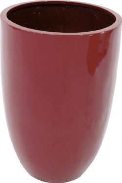 Europalms LEICHTSIN CUP-69, shiny-red