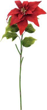 Europalms Poinsettia, red, 70cm
