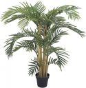 Europalms Kentia palm tree, 140cm