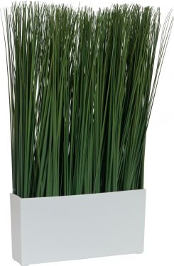 Europalms Marram grass, 50x27cm