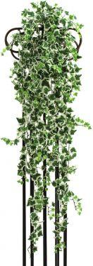 Europalms Ivy tendril, green-white, 100cm