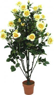 Europalms Rose shrub, light-yellow, 140cm
