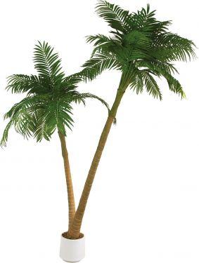 Europalms Palm, 2 trunks, 305cm