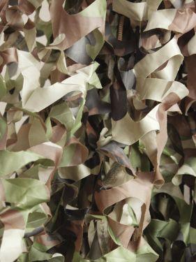 Europalms Decoration Net, US woodland, 300x200cm
