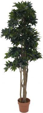 Europalms Mediterranean forest tree, 180cm