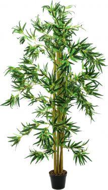 Europalms Bamboo Multi Trunk, 210cm