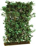 Europalms Ficus Hedge, 90x130cm