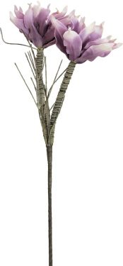 Europalms Magnolia Branch (EVA), violet