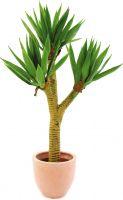 Europalms Yucca palmbush, 105cm