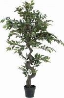 Europalms Ficus Forest Tree, 110cm