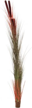 Europalms Reed grass w/ cattails, light-brown,152cm
