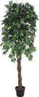 Europalms Ficus Tree Multi-Trunk, 180cm