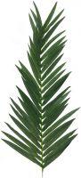 Europalms Coconut king palm branch, 150cm