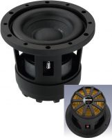 High-tech compact subwoofer, 100 W, 4 Ω RAPTOR-6