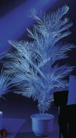 Udsmykning & Dekorationer, Europalms Kentia palm, artificial, uv-white, 90cm