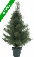 """Europalms Mini fir tree, 90cm """"B-STOCK"""""""