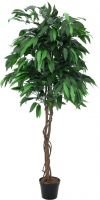 Europalms Jungle tree Mango, artificial plant, 180cm