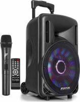 """FT10LED Portable Sound System 10"""" 450W"""