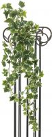 Udsmykning & Dekorationer, Europalms Holland ivy tendril, embossed, artificial, 183cm
