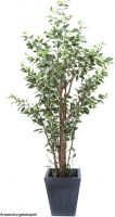 Europalms Ficus tree deluxe, artificial plant, 240cm