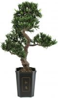 Europalms Bonsai podocarpus, artificial plant, 80cm