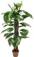 Udsmykning & Dekorationer, Europalms Pothos on trunk, artificial plant, 150cm