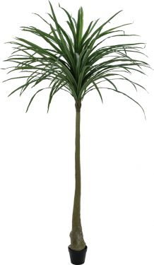 Europalms Dracena, green, artificial, 220cm