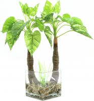 Europalms Pothos in glass, artificial, 50cm