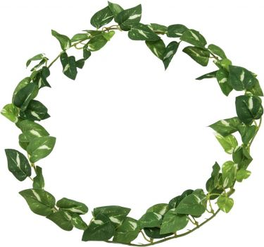 Europalms Pothos garland, artificial, 100cm