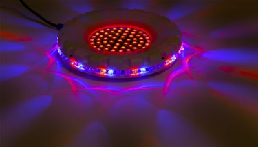 Spinning Sunflower with 61 centre LEDs