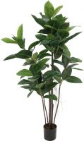 Europalms Rubber tree, artificial plant, 120cm