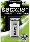 """Batterier og tilbehør, <span class=""""c10"""">Tecxus -</span> NiMH E-blok battteri 9V / 200mAh, ReadyToUse (1 stk.)"""