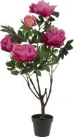 Europalms Peonies, rose, artificial plant, 90cm