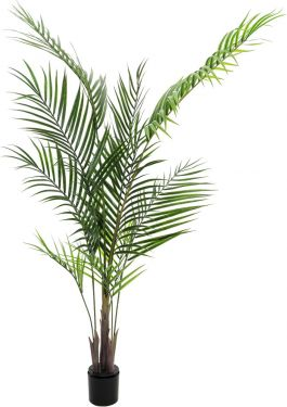 Europalms Areca palm with big leaves, artificial plant, 165cm