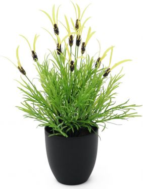 Europalms Feather lettuce, artificial, 40cm