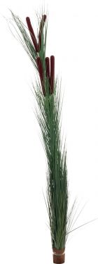 Europalms Reed grass with cattails,dark-green, artificial, 152cm