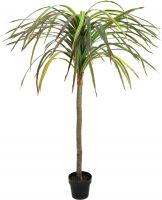 Europalms Dracena, red-green, artificial, 170cm