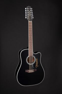 Takamine EF381DX, 12-Stringed Dreadnought