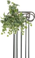 Artificial plants, Europalms Holland ivy tendril, embossed, artificial, 45cm