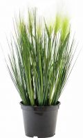 Artificial plants, Europalms Feather grass, artificial, white, 60cm