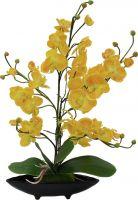 Europalms Orchid arrangement (EVA), artificial, yellow