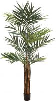 Europalms Kentia palm tree, artificial plant, 300cm