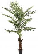 Europalms Kentia palm tree, artificial plant, 240cm
